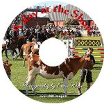A Day at the Show DVD