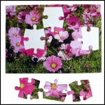 Cardstock Puzzles