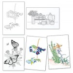 Adult Colouring Designs - Large Set 4