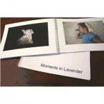 Moments in Lavender picture book for nonverbal adults with dementia