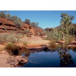 Outback pool jigsaw puzzle image