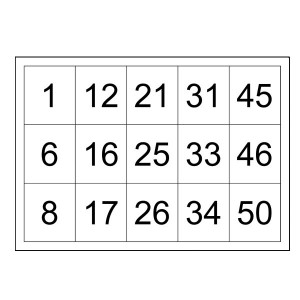sample bingo card with numbers to 50