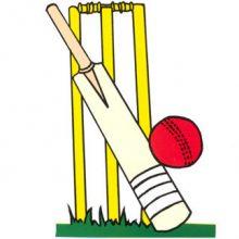 cricket bat and ball gif