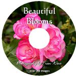 Beautiful Blooms DVD