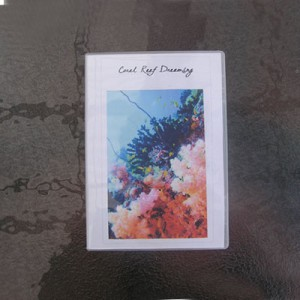 Coral Reef Dreaming DVD