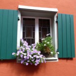 Jigsaw puzzle image - Window Box