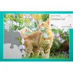 13 piece plastic jigsaw - Curious Cat