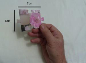 24 piece cardstock jigsaw piece size