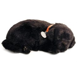 Sensory Pet - Black labrador