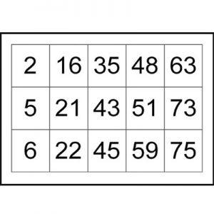75 nos bingo cards sample