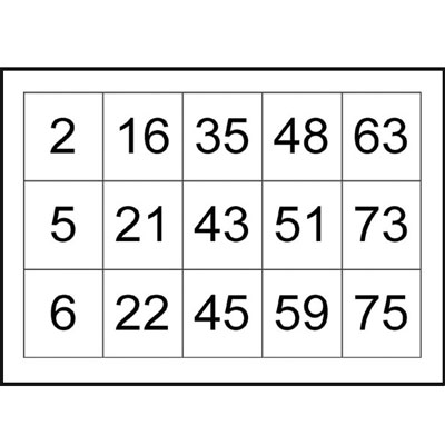 image regarding Printable Bingo Cards 1-75 identified as Bingo Playing cards Numbered in the direction of 75 Printable