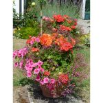 Jigsaw Puzzle - Potted Colour