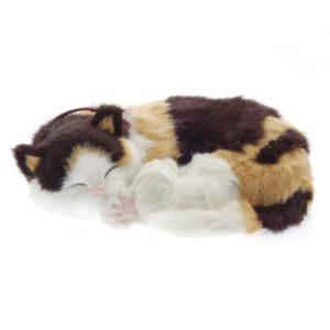 Sensory Pet - Calico Cat- breathing