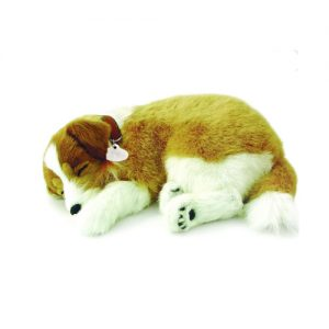 Sensory Pet - Collie - breathing