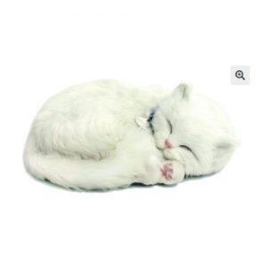 Sensory Pet - White Kitten - breathing toy